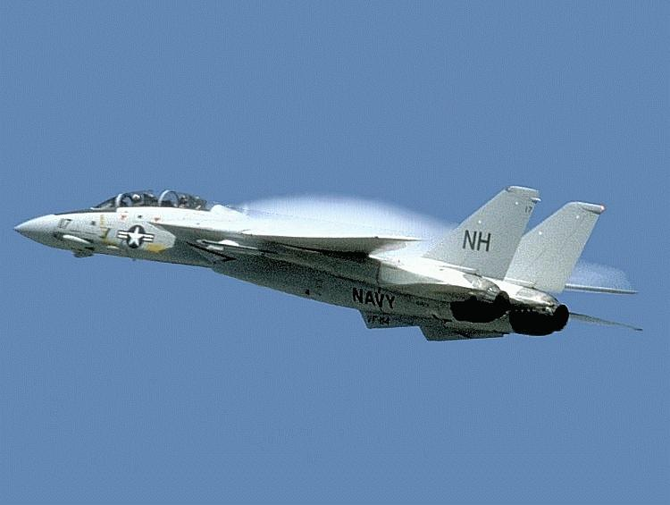 F 14 Tomcat Military Aircraft