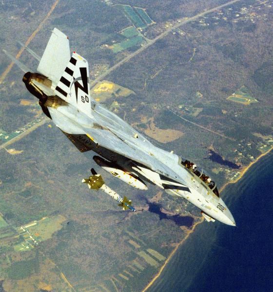 F 14 Tomcat Military Aircraft