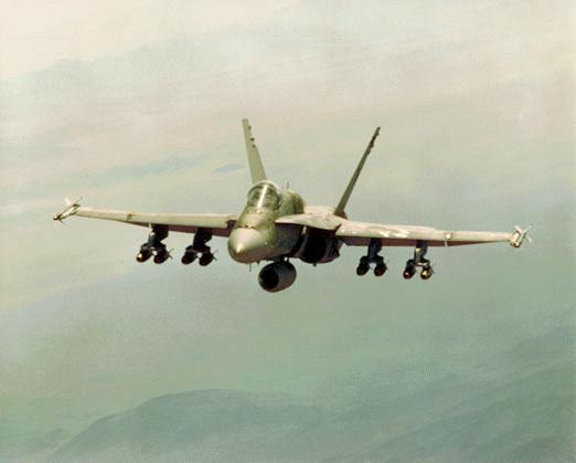 Resultado de imagen de F / A-18 vs su 34