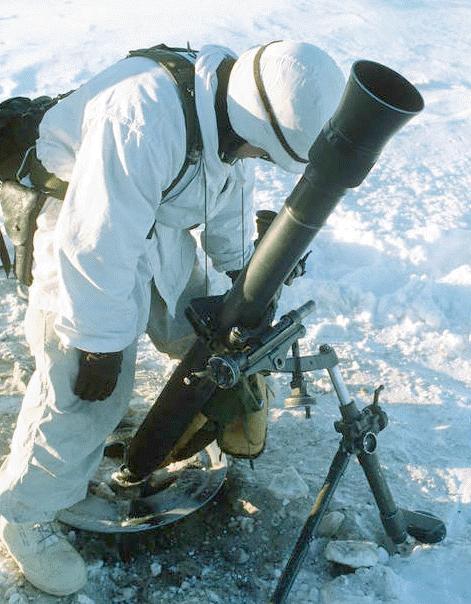 خمپاره انداز M252