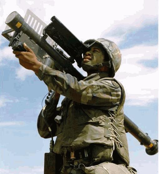 المقارنة الثانية الدفاع الجوي المصري و الاثيوبي Stinger_03